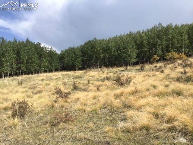 TBD Troy Way, Cripple Creek, CO 80813 (#7674204) :: CC Signature Group