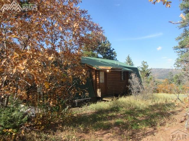 8860 Ula Trail Beulah, Beulah, CO 81023 (#7690364) :: Action Team Realty