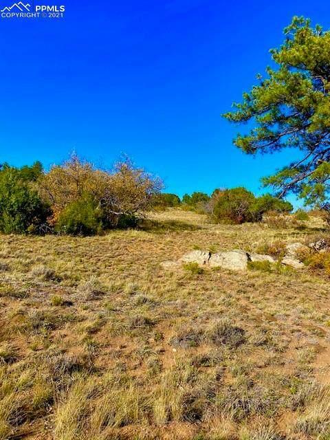 47 Bird Point Drive, Cotopaxi, CO 81223 (#7695174) :: The Kibler Group