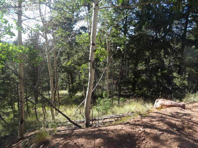 210 Rampart Circle, Florissant, CO 80816 (#7752423) :: 8z Real Estate