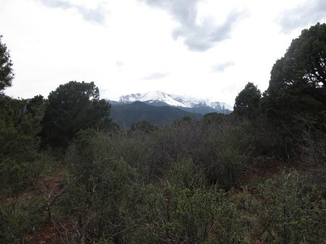 3670 Outback Vista Point, Colorado Springs, CO 80904 (#7806746) :: Action Team Realty