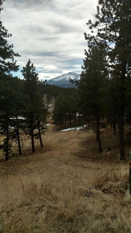 961 Spacious Skies Drive, Woodland Park, CO 80863 (#7822376) :: 8z Real Estate