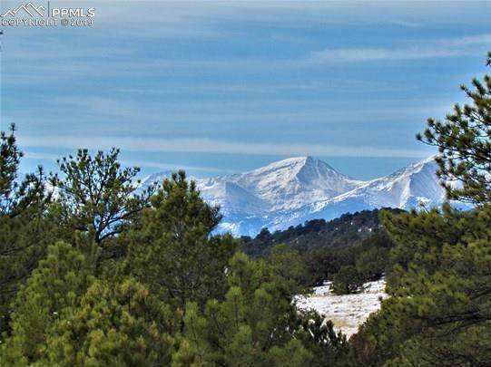 TBD MB County 143 Road, Canon City, CO 81212 (#7858058) :: CC Signature Group