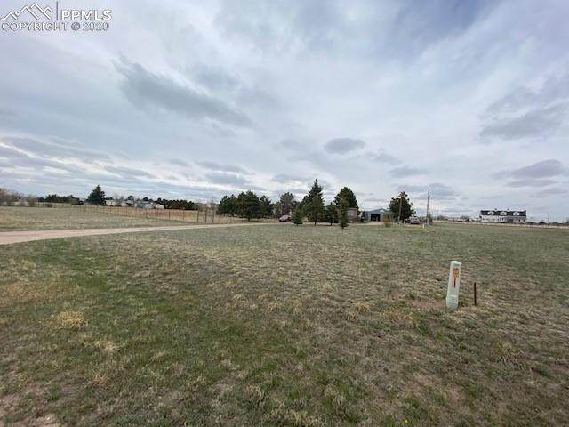 11690 Owl Place, Peyton, CO 80831 (#7887330) :: The Scott Futa Home Team