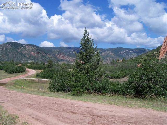 5905 Country Club Drive, Larkspur, CO 80118 (#7890584) :: The Treasure Davis Team