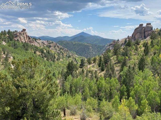 Lot 7, Climax Drive, Cripple Creek, CO 80813 (#8012389) :: The Treasure Davis Team | eXp Realty
