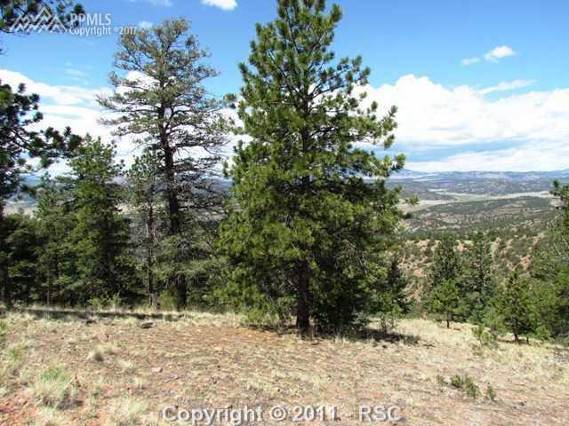 Lot 5 Spring Canyon Road, Cripple Creek, CO 80813 (#8017129) :: 8z Real Estate