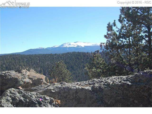 Charming View Road, Divide, CO 80814 (#8071100) :: The Kibler Group
