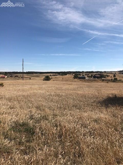 13680 Woodlake Road, Elbert, CO 80106 (#8077750) :: 8z Real Estate