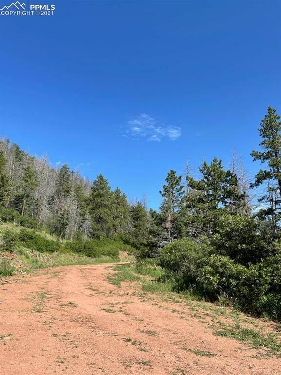 5394 Cheyenne Drive, Larkspur, CO 80118 (#8159238) :: The Treasure Davis Team | eXp Realty