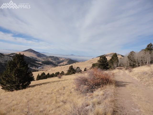 TBD Rhyolite Mountain Mesa Road, Cripple Creek, CO 80813 (#8298727) :: The Treasure Davis Team
