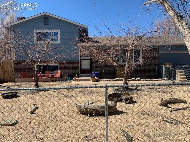 3704 Indianpipe Circle, Colorado Springs, CO 80918 (#8308266) :: The Dixon Group