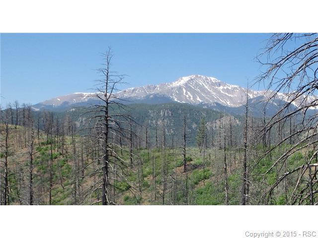 4129 Pyramid Mountain Road, Cascade, CO 80809 (#8308480) :: 8z Real Estate