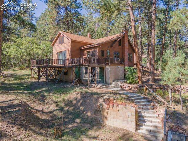159 Shady Lane, Palmer Lake, CO 80133 (#8372994) :: Tommy Daly Home Team