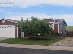 4542 Gray Fox Heights, Colorado Springs, CO 80922 (#8398189) :: The Kibler Group