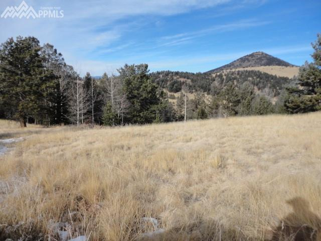 648 Burns Drive, Cripple Creek, CO 80813 (#8537040) :: 8z Real Estate