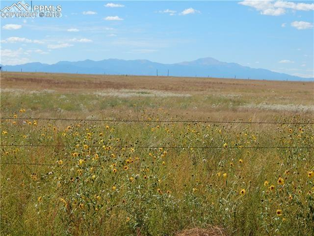 0000 Savanna Acres Grove, Colorado Springs, CO 80930 (#8629912) :: The Peak Properties Group