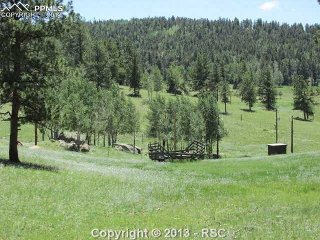 Tract 4 County 42 Road, Divide, CO 80814 (#8643587) :: 8z Real Estate