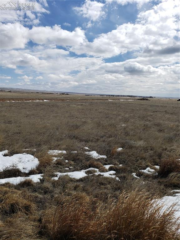 7041 Otoole Drive, Calhan, CO 80808 (#8673775) :: Tommy Daly Home Team