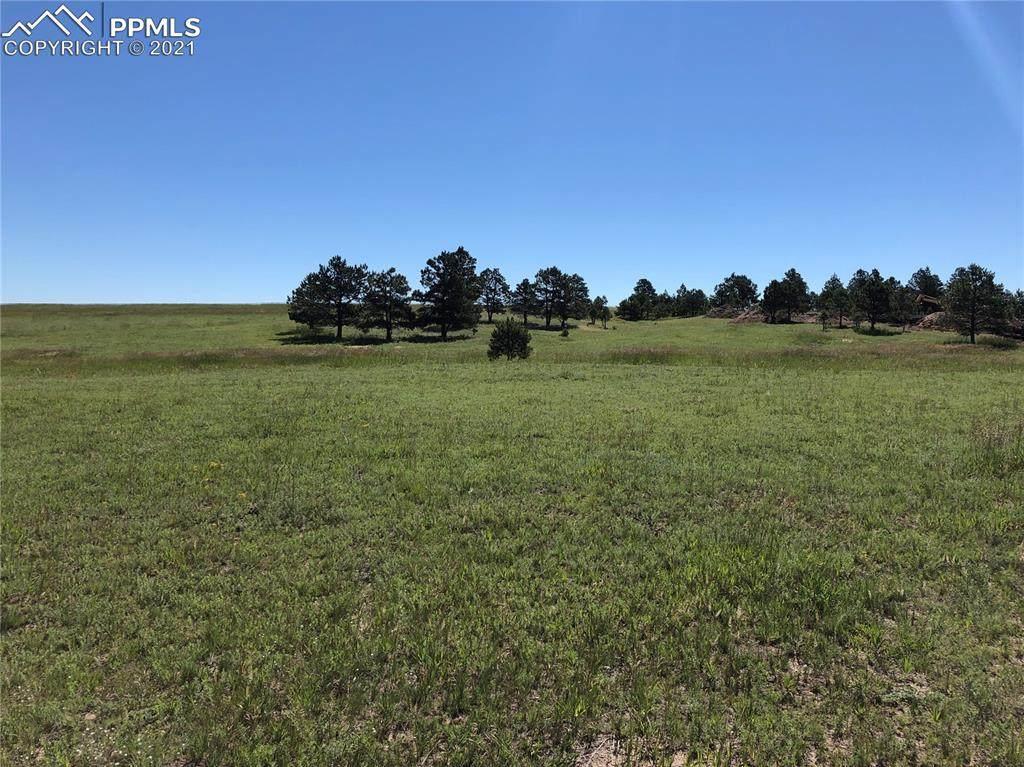 11516 Bison Meadows Court - Photo 1