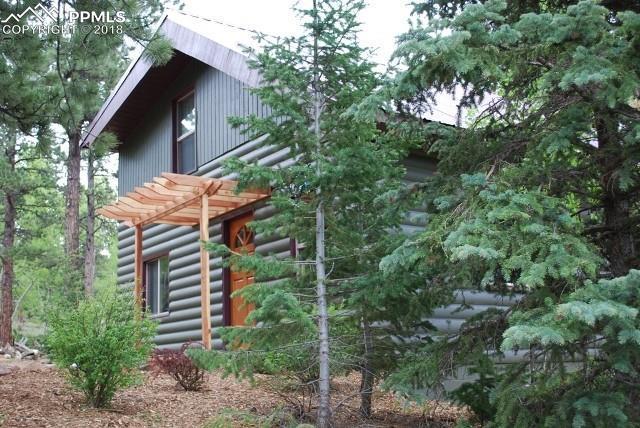 10 Rucker Loop, Manitou Springs, CO 80829 (#8843935) :: The Peak Properties Group