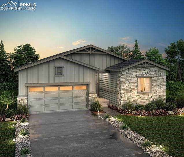 2031 Villageview Lane Lot 12, Castle Rock, CO 80104 (#8845043) :: The Daniels Team