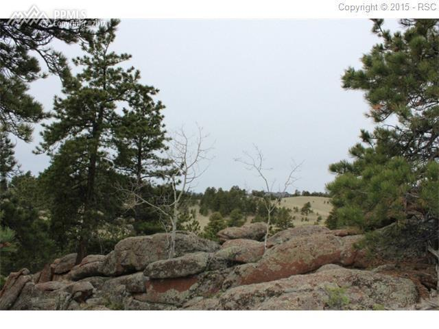 1347 County 12 Road, Florissant, CO 80816 (#8983924) :: 8z Real Estate