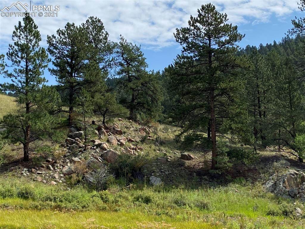 2599 Highland Meadows Drive - Photo 1