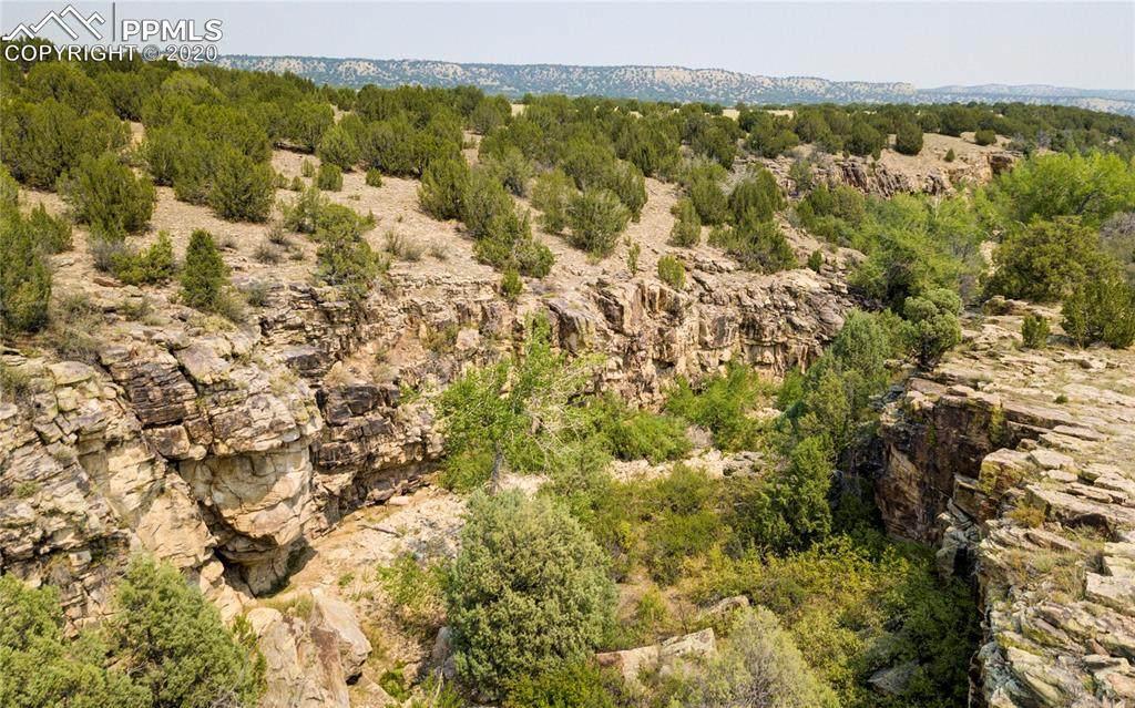 0 Red Creek Springs Road - Photo 1