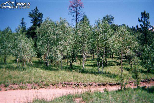 Eagle Mountain Road, Manitou Springs, CO 80829 (#9231436) :: 8z Real Estate