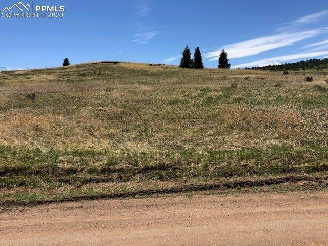 1298 Will Scarlet Drive, Divide, CO 80814 (#9307568) :: Finch & Gable Real Estate Co.