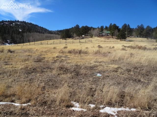 425 Arapahoe Trail, Lake George, CO 80827 (#9399440) :: 8z Real Estate
