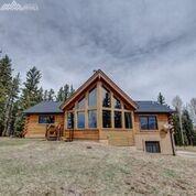 168 Dani Place, Divide, CO 80814 (#9403526) :: 8z Real Estate