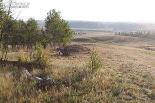 1248 Frees Loop, Hartsel, CO 80449 (#9417539) :: Action Team Realty