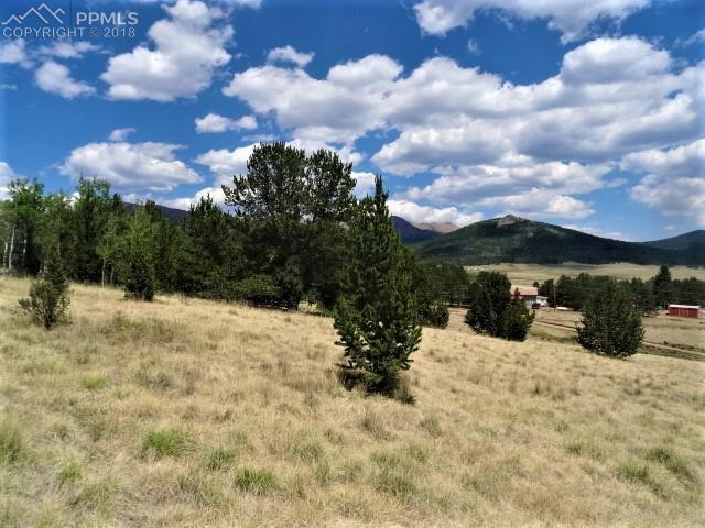 TBD S Eagle Nest, Cripple Creek, CO 80813 (#9470737) :: The Treasure Davis Team
