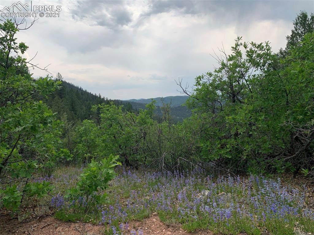 1289 Pine Vista - Photo 1