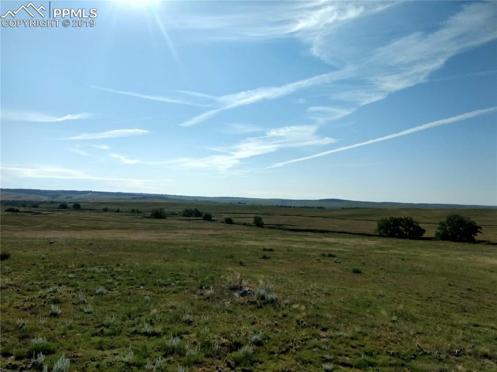 Lot 2 Fiddleback Ranch Circle - Photo 1
