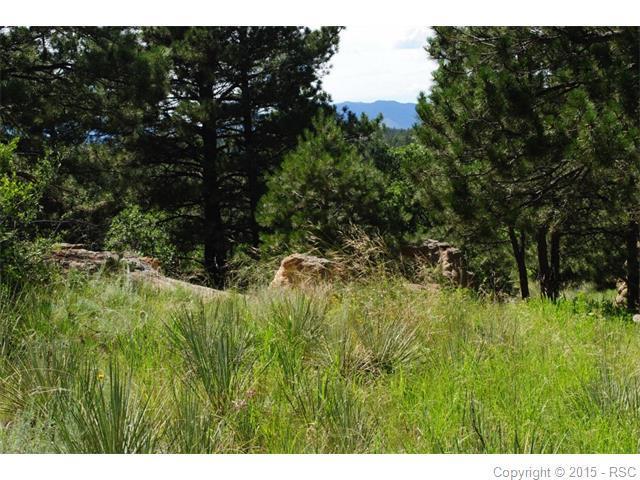 4225 Mcpherson Avenue, Colorado Springs, CO 80909 (#9560934) :: 8z Real Estate