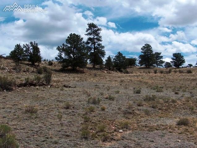 234 Arapahoe Trail, Hartsel, CO 80449 (#9617099) :: 8z Real Estate