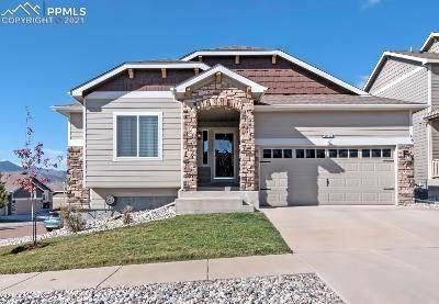 12310 Warm Springs Drive, Colorado Springs, CO 80921 (#9692106) :: Compass Colorado Realty