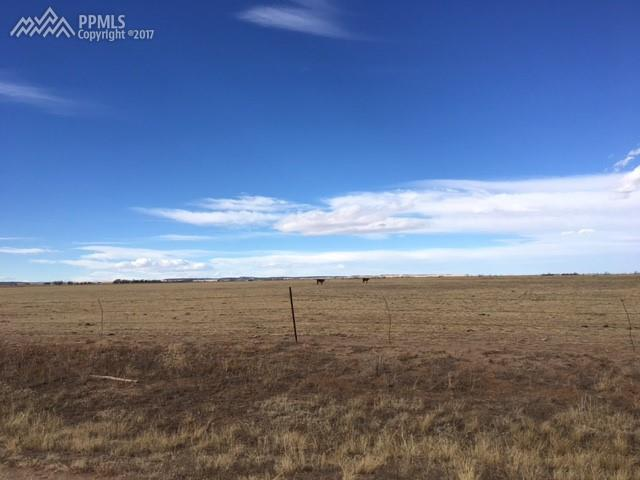 21307 Chesley Drive, Calhan, CO 80808 (#9741676) :: Fisk Team, RE/MAX Properties, Inc.