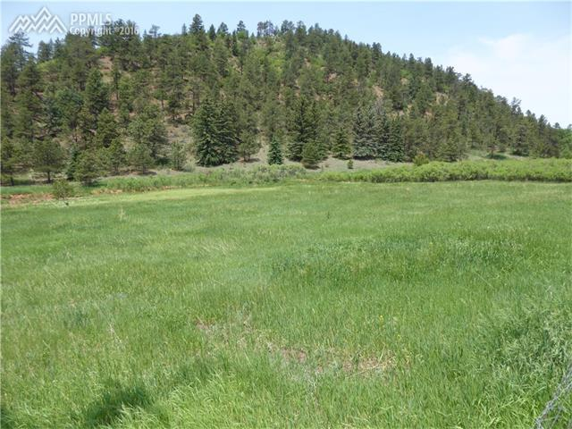 TBD County 21 Road, Woodland Park, CO 80863 (#9772887) :: 8z Real Estate