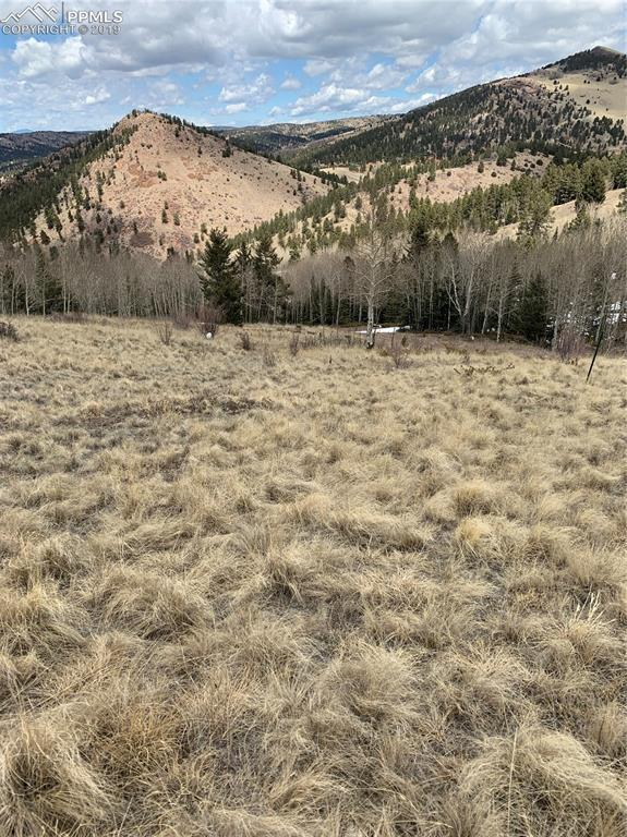 2250 County 1 Road, Cripple Creek, CO 80813 (#9775822) :: 8z Real Estate