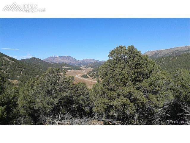 N Dunn Drive, Canon City, CO 81212 (#9818843) :: 8z Real Estate