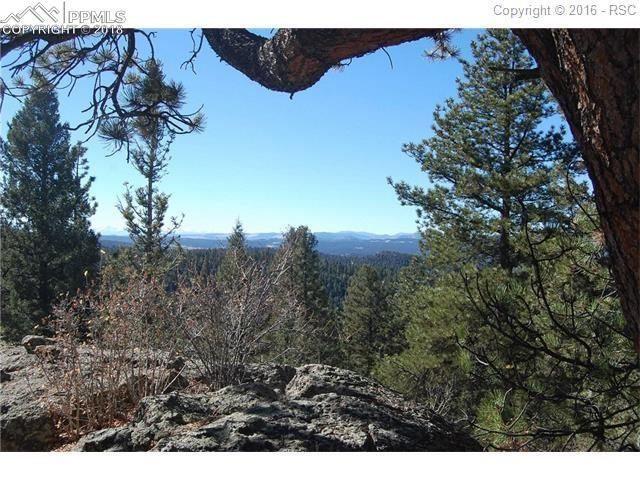 Charming View Road, Divide, CO 80814 (#9857482) :: The Peak Properties Group