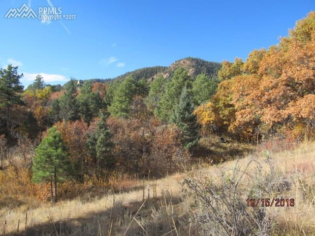 2295 Pegasus Park View, Colorado Springs, CO 80906 (#1034419) :: 8z Real Estate