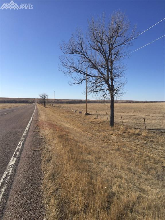 0 Highway 94 Highway, Rush, CO 80833 (#1228739) :: Action Team Realty