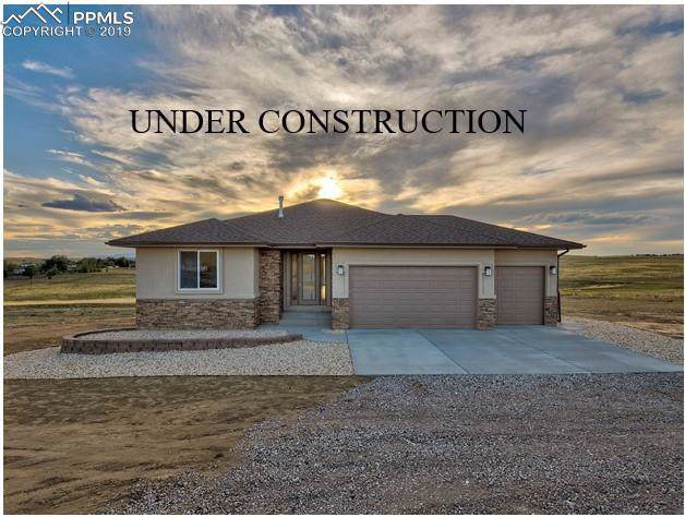 1620 Terri Lee Drive, Peyton, CO 80831 (#2079284) :: Tommy Daly Home Team