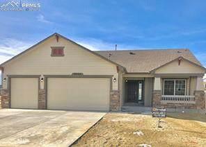 9944 Devoncove Drive, Falcon, CO 80831 (#2147928) :: CC Signature Group