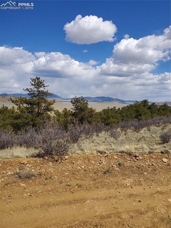 Tarryall Street, Hartsel, CO 80449 (#2215233) :: Compass Colorado Realty